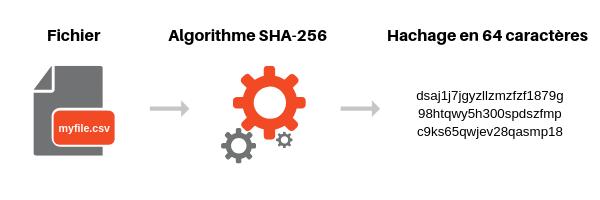 webinar comment exploiter la donnée pour optimiser votre acquisition Squadata